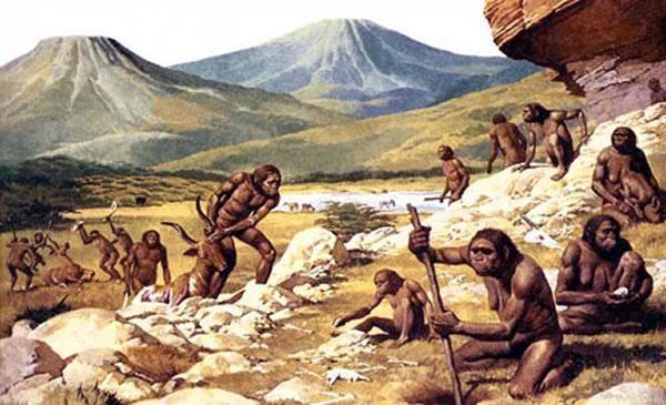 吾从何处来——人类的起源与演化2.jpg